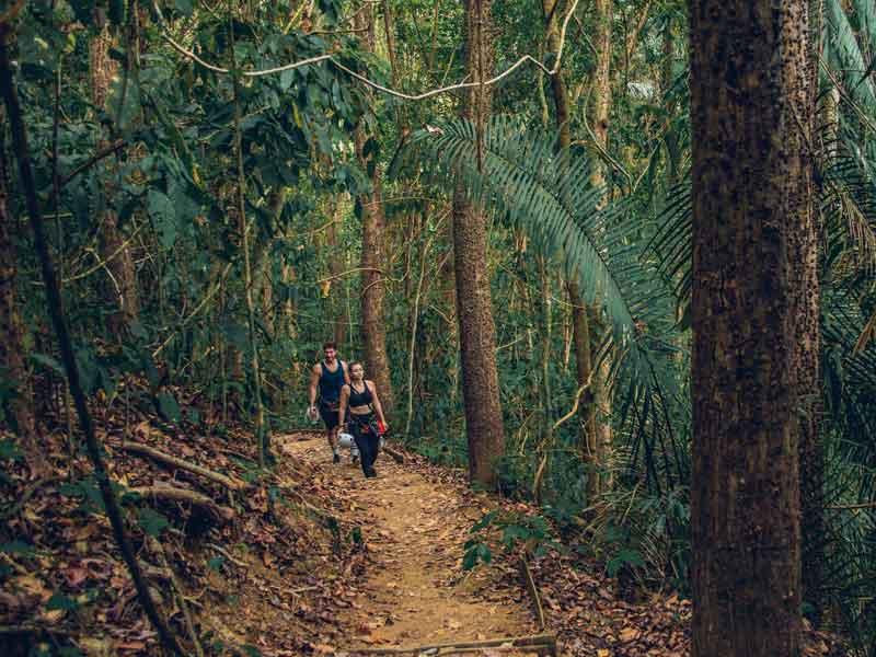Riserva Nazionale di Vita Silvestre Hacienda Barú | Visita Costa Rica | Costa  Rica Turismo sito ufficiale